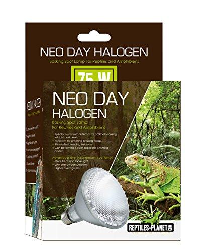 REPTILES PLANET Illuminazione per Reptiles Neo Day Alogena 75W