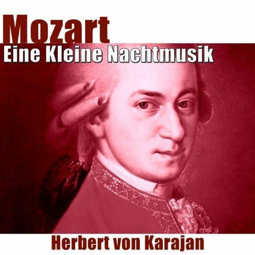 Vienna Philharmonic Orchestra, Herbert von Karajan