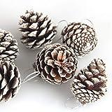Cono de pino de Navidad de 6 piezas, colgante de cono de pino de decoración de árbol de Navidad de 5 cm, decoración de Navidad, cono de pino natural teñido blanco pequeño adorno de cono de pino