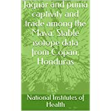 Jaguar and puma captivity and trade among the Maya: Stable isotope data from Copan, Honduras (English Edition)