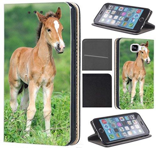 Hülle für Samsung Galaxy A10 Handyhülle Flipcover Coverfix2 Schutzhülle Handycover Handy Case 1531 Fohlen Pferd Tier Braun Hülle für Samsung Galaxy A10