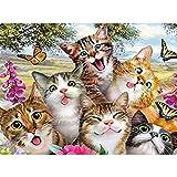 Kits de pintura de diamantes cuadrados 5D para bricolaje, kit de punto de cruz,5d pintura diamante,square diamond painting bordado de gatos para decoración del hogar 30 x 40 cm