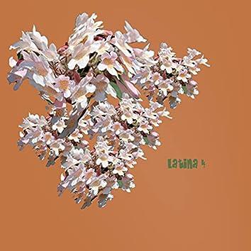 Latina, Vol. 4