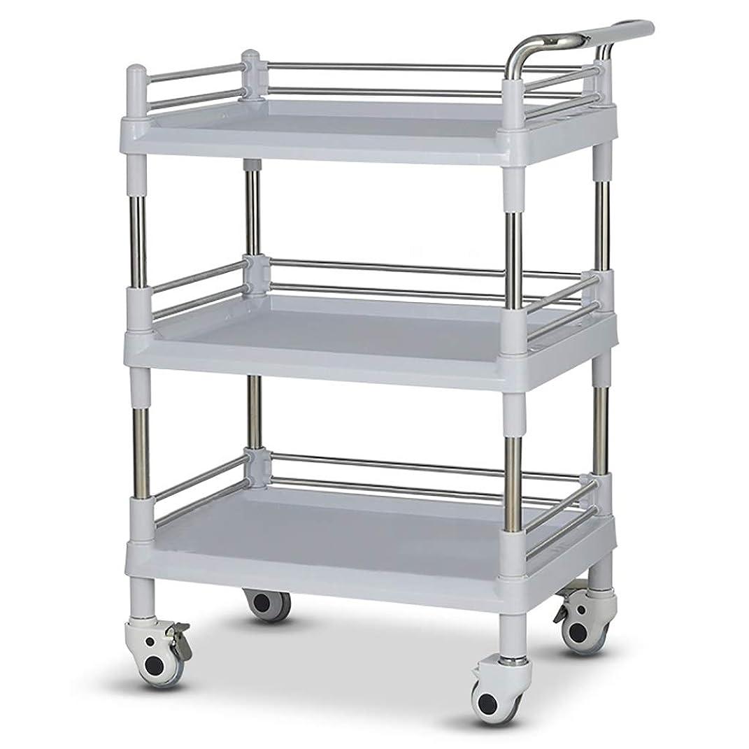 前文スキッパートランジスタ美容院の医学の移動式カート、多機能の器械用具の変更の薬車のプラスチックステンレス鋼の棚 (サイズ さいず : 73*53*100cm)