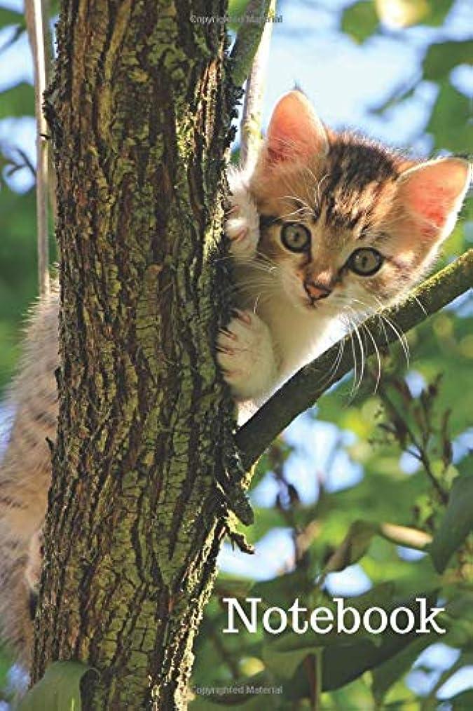 ガロンディレイパンNotebook: Notebook with Cats for Kids, Notebook for Coloring Drawing and Writing (110 Pages, Blank, 6 x 9)