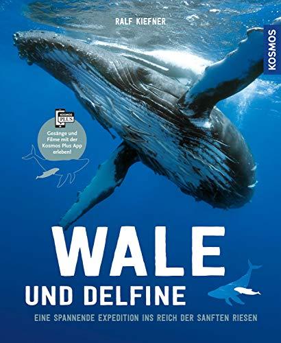 Wale & Delfine: Eine spannende Expedition ins Reich der sanften Riesen