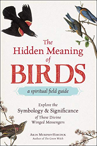 The Hidden Meaning of Birds--A Spiritual Field Guide: Explore the Symbology and Significance of...