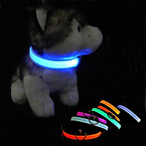 Vikenner LED Leuchthalsband Hunde Hundehalsband Haustier Kragen Robust Halsband für Hund Blau M