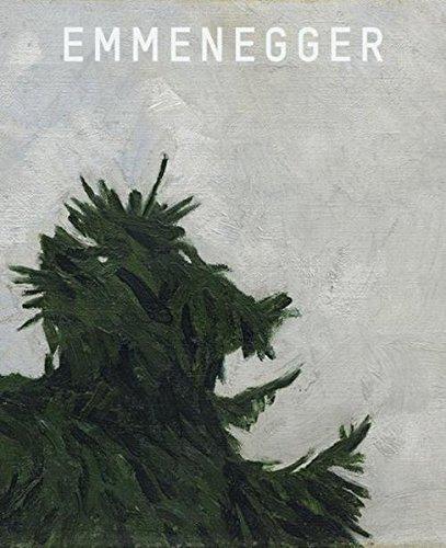 Hans Emmenegger: Kat. Kunstmuseum Luzern