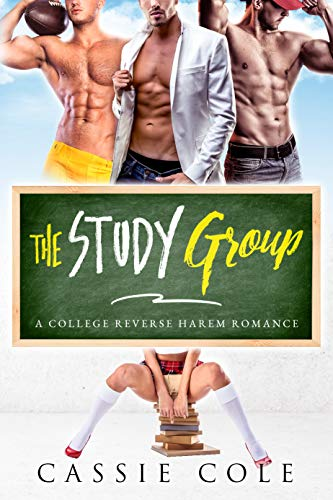 The Study Group: A College Reverse Harem Romance
