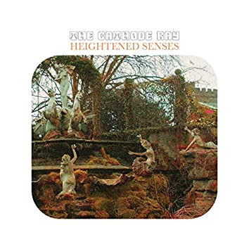 Heightened Senses