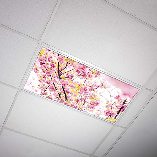 Octo Lights - Fluorescent Light Covers - 2x4 Flexible Decorative Light Diffuser Panels - Flower - for Classrooms and Offices - Flower 006