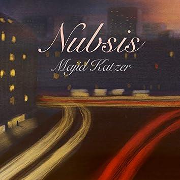 Nubsis (Fünfzig faszinierende Fachinformationen)