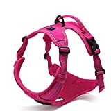Dog Harness No Pulls Review and Comparison