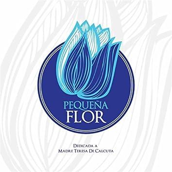 Pequeña Flor (feat. Impactados X Cristo, Evelyn Vásquez Shalom Pa' Ti & D'fe)