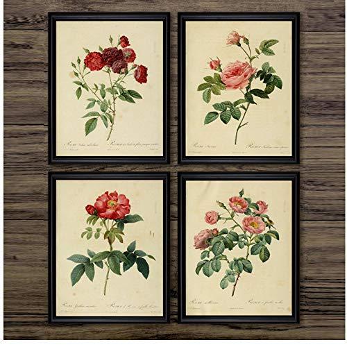 SHUTIAOQUN Antike Pflanzen Illustrationen Leinwand Poster Vintage Botanische Drucke Office Studies Dekor Wandkunst Bilder Rose Flower Painting 30 * 40cm * 4 Rahmenlos