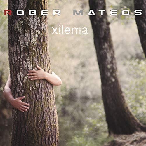 Rober Mateos