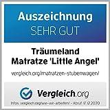 Träumeland Matratze für Stubenkorb, Little Angel, 70 x 37 cm, oval - temperaturausgleichende Gelschaummatratze - 10