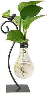 Desktop Glass Planter Hydroponics Vase,Planter Bulb Vase with Holder for Home Decoration,Modern Creative Bird Plant Terrar...