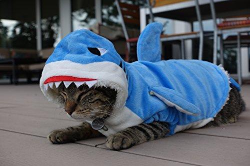 Das Allererste Hai-Kostüm für Katzen - Tierfreundlich, Lebendig Blau, Super Weich, 100% Baumwolle, Klettverschluss