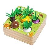 Montessori Wooden Toys for 1 2 3 Years Old Boys Girls, Vegetable Fruit Harvest Shape Size Sorting Puzzle Games for Fine Motor Skill, STEM Educational Toy Gift for Preschool Kindergarten Toddlers Kids