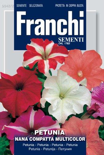 Seeds of Italy Ltd Franchi Graines de pétunia variété Compatta