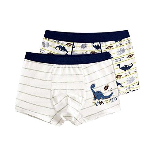 LIUONEXI 2Pcs Baby Cartoon Trainerhosen Töpfchen Hosen für Jungen Unterwäsche Unterhosen