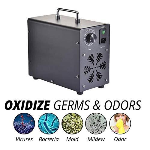 shewt Generador de ozono 10000mg O3 Purificador de Aire Desodorizador Esterilizador Eliminación de formaldehído para hoteles y Granjas Escolares en casa