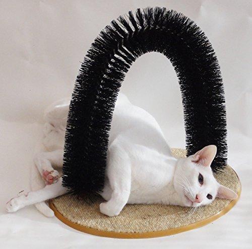 Cat Kitten Scratch arco Post novio y dientes de limpieza de cerdas alfombra Catnip