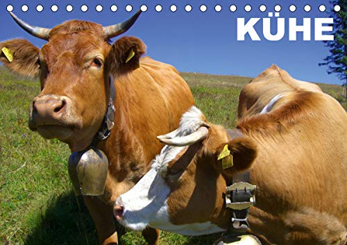 Kühe/Geburtstagskalender (Tischkalender 2021 DIN A5 quer)