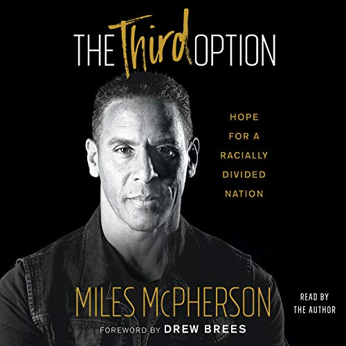The Third Option audiobook cover art