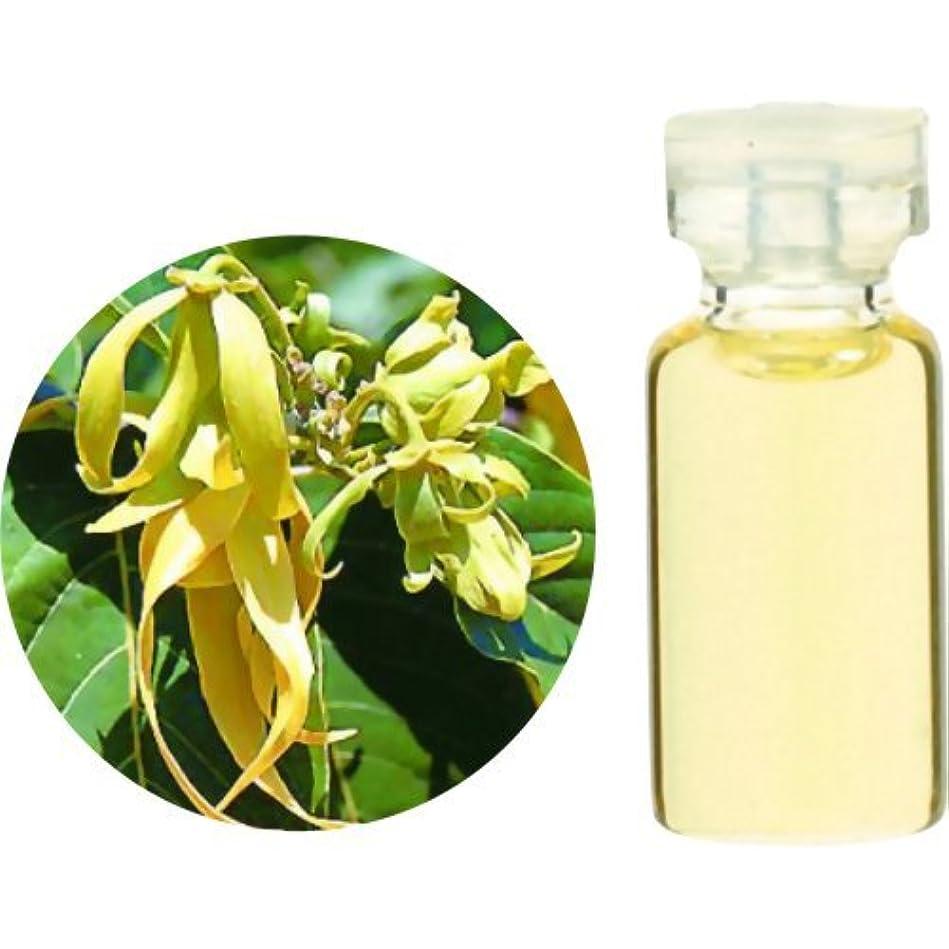 誠実迷惑欠陥生活の木 Herbal Life イランイラン 3ml