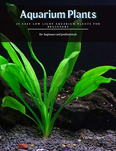 Aquarium Plants: 30 Easy Low Light Aquarium Plants for Beginners (English Edition)