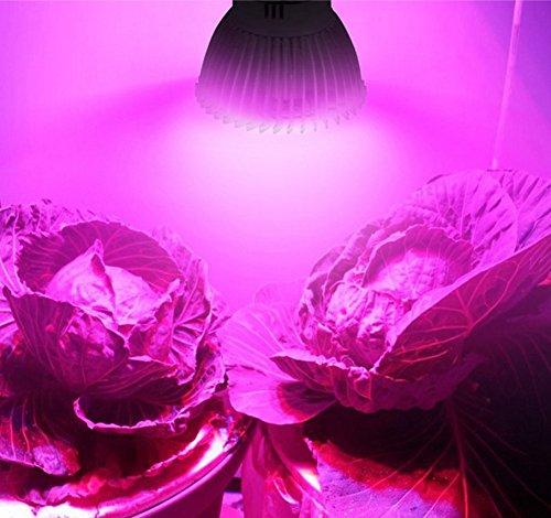 Pflanzenlampe LED Vollspektrum Wachstumslampe mit 18W LEDs Pflanzenleuchte Pflanzenlicht kompatibel mit Standard GU10 für Zimmerpflanzen, Blumen und Gemüse