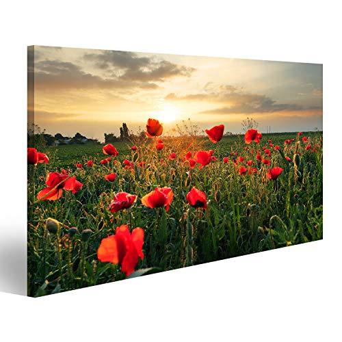 bilderfelix® Bild auf Leinwand Mohnblumen Feldblume bei Sonnenuntergang Wandbild, Poster, Leinwandbild PYC