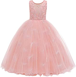 Kids Girl V-Neck Embroidery Flower Tulle Long Princess Pageant Dress Wedding Birthday Party First Communion Formal Evening Dance Bridesmaid Dresses Prom Ball Gown Blush Pink 4-5 Years