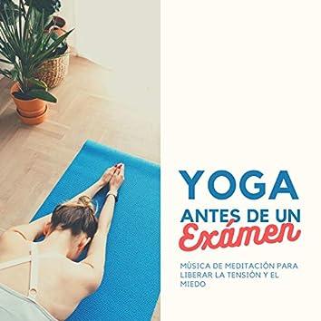 Yoga antes de un Exámen: Música de Meditación para Liberar la Tensión y el Miedo