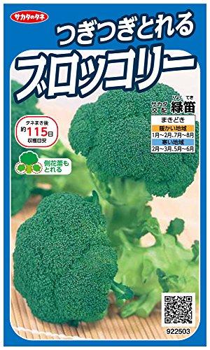 サカタのタネ 実咲野菜2503 つぎつぎとれるブロッコリー 緑笛 00922503