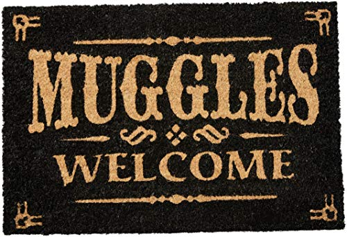 Pyramid International Fußmatte Harry Potter Muggles Welcome, 60 x 40 cm, Mehrfarbig
