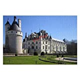 YYone 300 Pieces Jigsaw Puzzles Chateau De Chenonceau France Castles Wooden Jigsaw Puzzles Kids Educational Family Game Toys Gift for Adults Teens