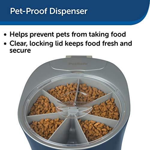 PetSafe Alimentador automático para 6 comidas para mascotas, dispensador de comida para gatos y perros, ideal para gatos y perros pequeños