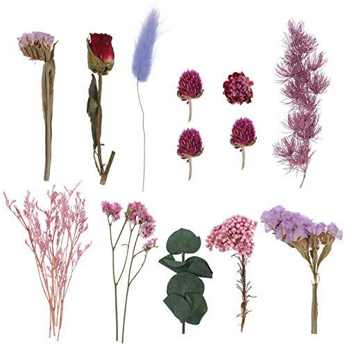 EXCEART 1セットの天然ドライフラワー本物のドライリーフフラワー植物混合押し花DIYクラフトジュエリーキャ...
