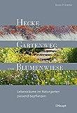 Hecke, Gartenweg und Blumenwiese: Lebensräume im Naturgarten passend bepflanzen