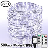 99Ft LED Rope Lights Outdoor, 500 LEDs Fairy String Lights Plug in 8 Modes, Dimmable, Super Durable, Waterproof String Lights Outdoor Indoor for Patio Wedding Christmas, 2 Remote Control (White)