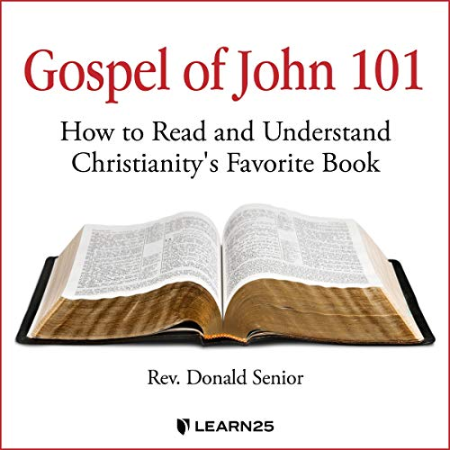 Gospel of John 101: How to Read and Understand Christianity's Favorite Book copertina