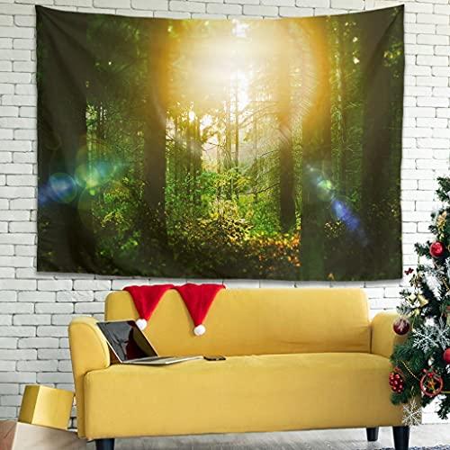 Hermoso tapiz para colgar en la pared del bosque y el sol, estampado de bosque, para el hogar, sala de estar, dormitorio, habitación de los niños, blanco 59 x 59 pulgadas