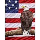American Adler 3D-Poster, Wanddekoration, 30 x 39,9 cm,