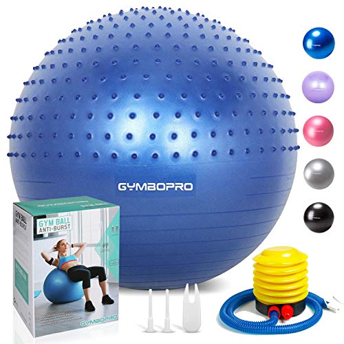 GYMBOPRO Exercise Ball Massage Point Design Professional Stability Ball Chair Anti-Burst Birthing Ball with Quick Pump for Gym, Fitness, Stability, Balance & Yoga(Blue-2, 65CM)