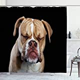 Ahawoso Shower Curtain for Bathroom 72x72 Side Young English One Bulldog Sitting Closed Dog Eyes with Year Domestic Looking Animals Wildlife Waterproof Polyester Fabric Bath Decor Set with Hooks