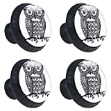 LORVIES My Last, Owl Logo and Tawny Owl Drawer Knob Pull Handle Crystal Glass Circle Shape Cabinet Drawer Pulls Cupboard Knobs with Screws for Home Office Cabinet Cupboard (4 Pieces)